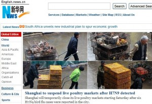 Partial screen capture of the home page of the Chinese news agency Xinhua (http://www.xinhuanet.com/english/), showing the culling of poultry in Shanghai.
