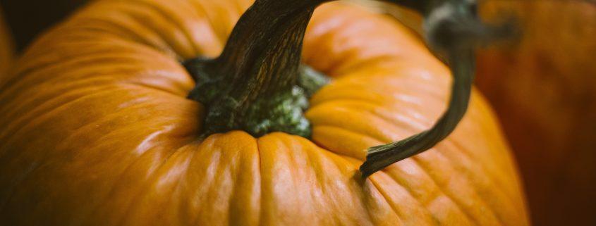 pumpkin_unsplash_31oct2016